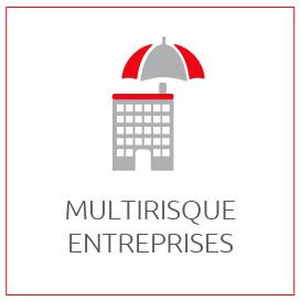 PROFESSIONNELS : Assura,ce Multirisques Entreprises